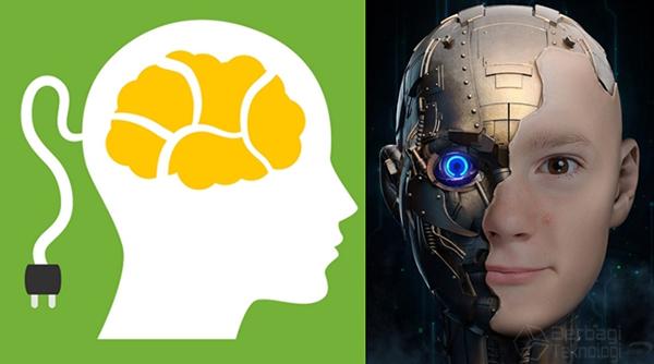 Robot Dreamer